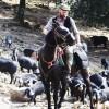 3 activités natures à faire en Corse