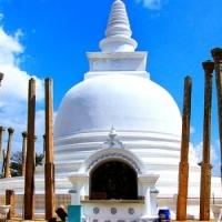 Venir au Sri Lanka pour assister aux différents évènements palpitants