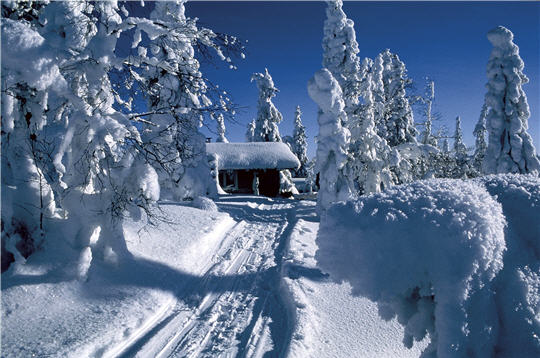 Pourquoi voyager en Laponie et rencontrer le père noel
