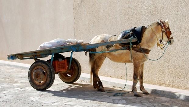 vivre en tunisie